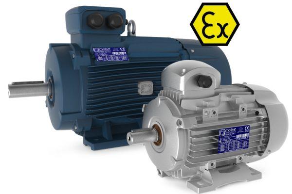 DELPHI-Ex motors